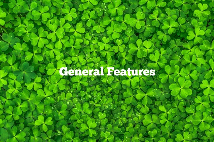 General Features